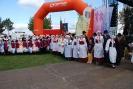 IX Festiwal Tradycji i Folkloru - 8.9.2019